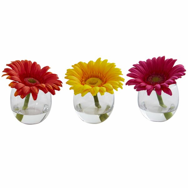 Gerbera Daisy Floral Arrangement in Decorative Vase (Set of 3) by Ebern Designs