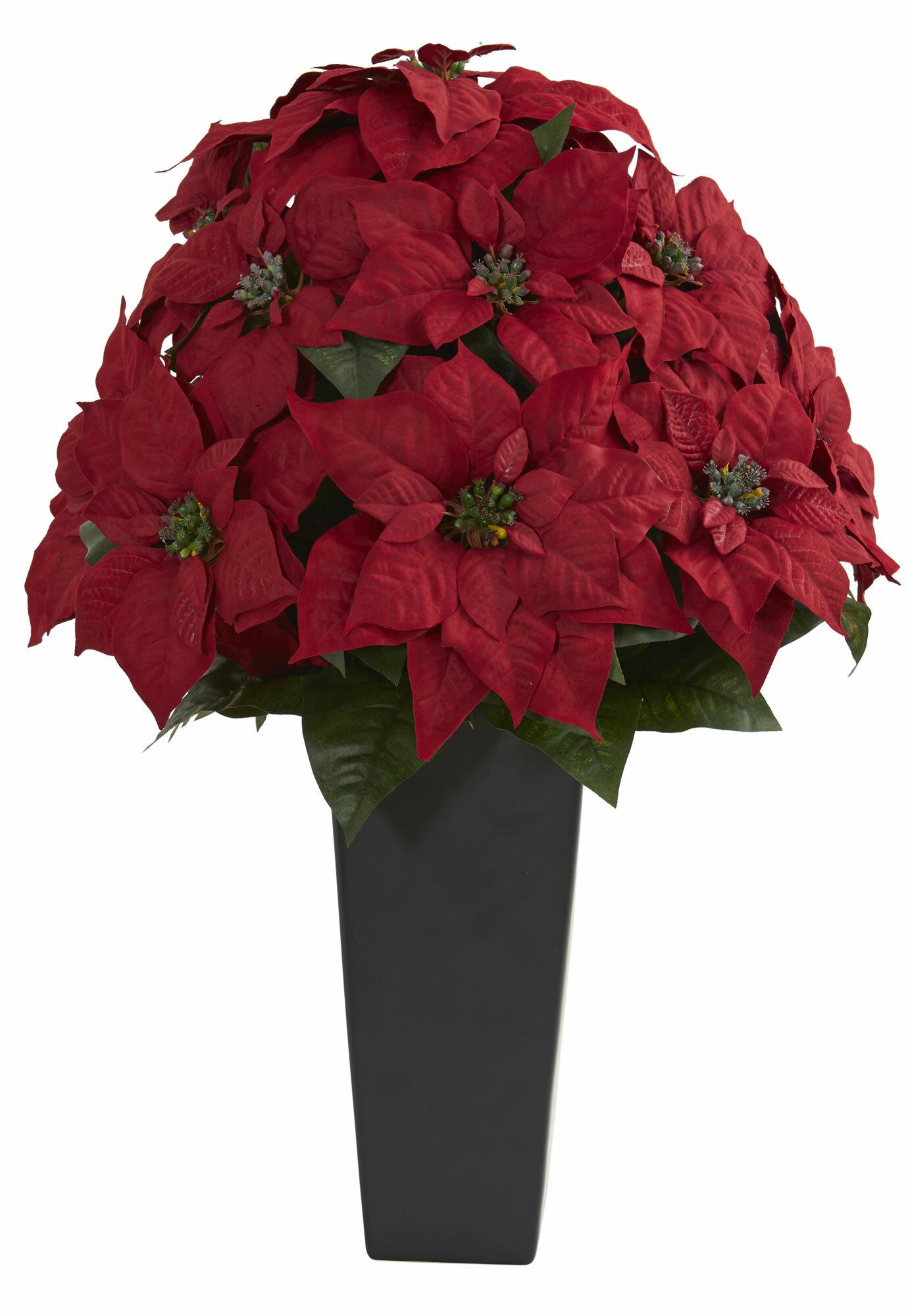 Latitude Run Poinsettia Floral Arrangement In Planter Wayfair