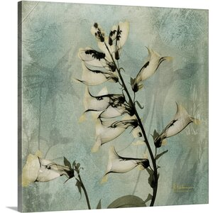 Foxglove IV X-Ray by Albert Koetsier Photographic Print on Canvas by Great Big Canvas
