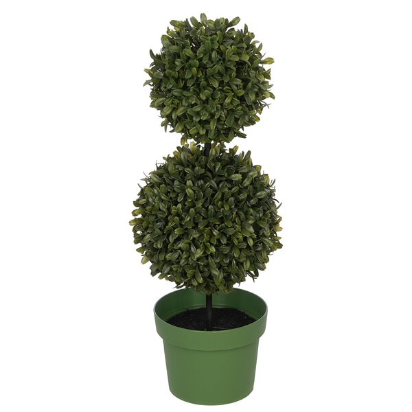 Artificial Double Ball Desktop Boxwood Topiary in Pot by Charlton Home