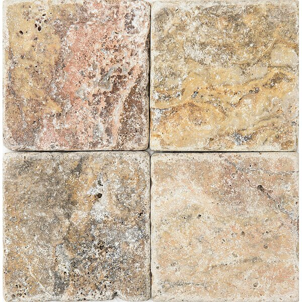 Scabos Tumbled 4 x 4 Stone Tile by Parvatile