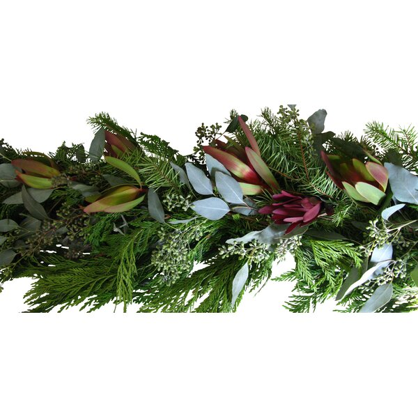 Holiday Safari Sunset Garland by From the Garden
