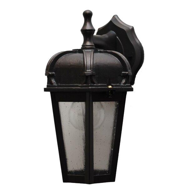 Flannigan 1-Light Outdoor Wall Lantern by Charlton Home