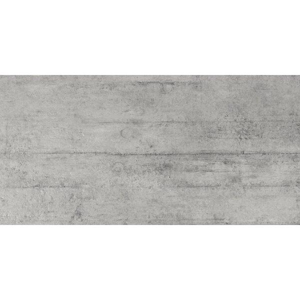 Cemento Novara 12 x 24 Porcelain Field Tile in Gray by MSI