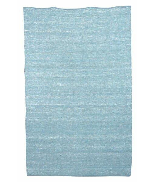 Newburgh Hand-Woven Blue Area Rug by Threadbind