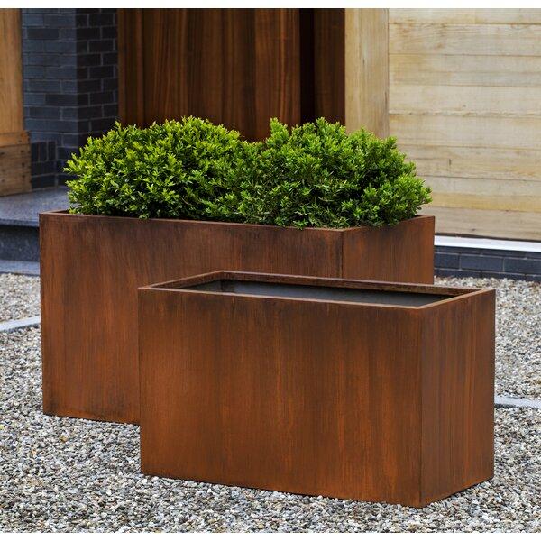Riehl Steel Box Planter (Set of 2) by Brayden Studio