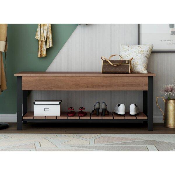 Versatile 10 Pair Shoe Storage Cabinet
