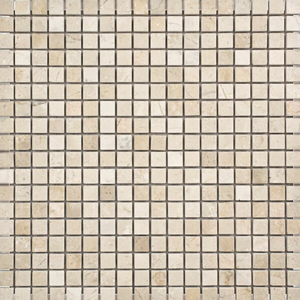 Crema Marfil 0.625 x 0.625 Stone Mosaic Tile Polished by Parvatile