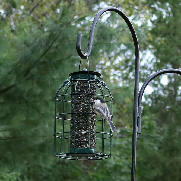 Wire Squirrel-Proof Tube Bird Feeder by Wildon Hom