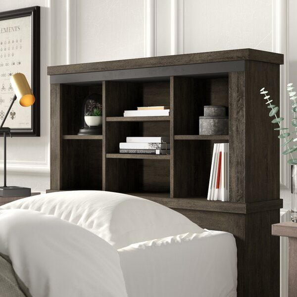 Sallie Bookcase Panel Headboard by Greyleigh