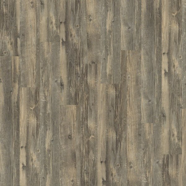 Arbour Hill 6 x 48 x 0.13mm Luxury Vinyl Plank in Gresham by Shaw Floors