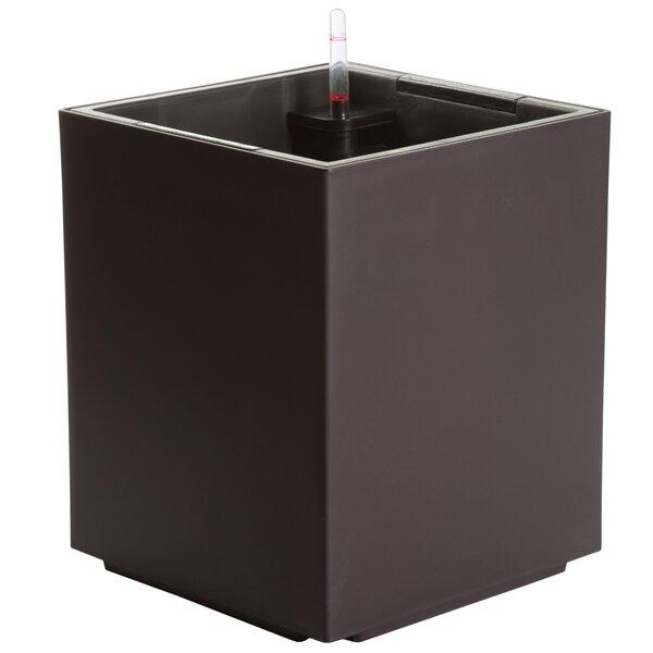 Byrum Self-Watering Plastic Planter Box by Wrought Studio