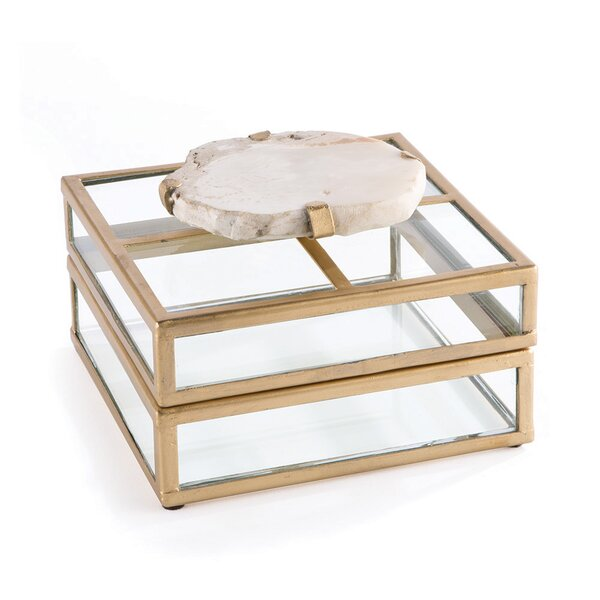 Fossilized Clam Glass Display Box by Napa Home and