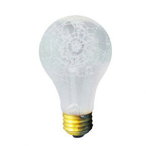 60W 130-Volt Incandescent Light Bulb (Set of 19) by Bulbrite Industries