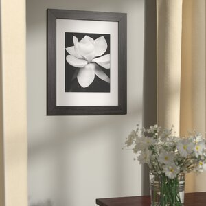 Abrahamic Magnolia Matted Framed Photographic Print by Red Barrel Studio