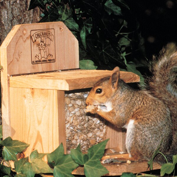 Squirrel Feeder by Chuck-A-Nut Products