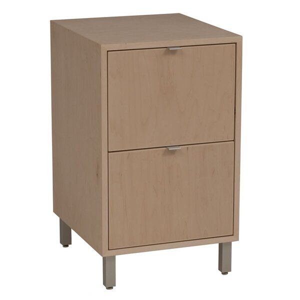 Southville 2-Drawer File Cabinet by Latitude Run