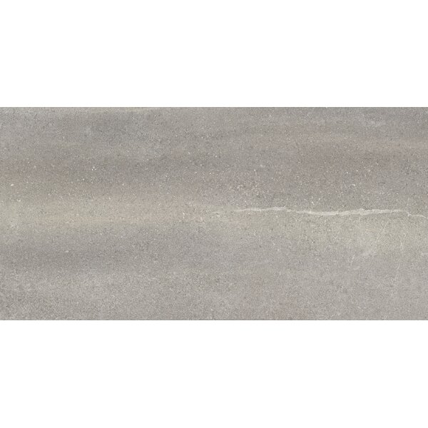 Core 10 x 20 Porcelain Field Tile in Gray by Parvatile