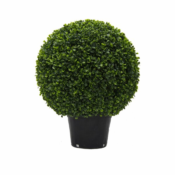 Inherently Flame Retardant Ball Floor Boxwood Topiary in Pot by Fleur De Lis Living
