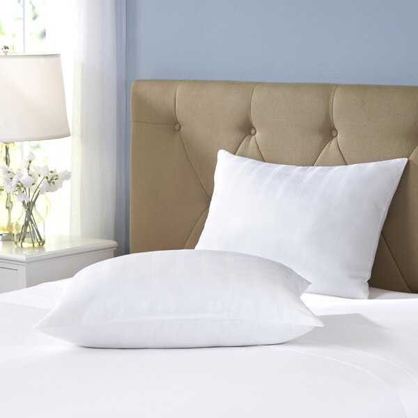 Wayfair Basics Gel Fiber Pillow (Set of 2) by Wayfair Basics™