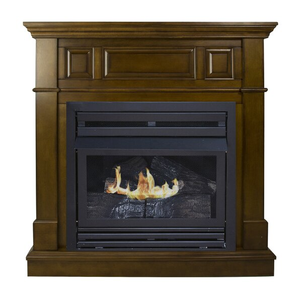 Shawnna Vent Free Fireplace By Darby Home Co