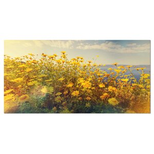 'Wild Yellow Flowers Meadow' Photographic Print on Wrapped Canvas by Design Art