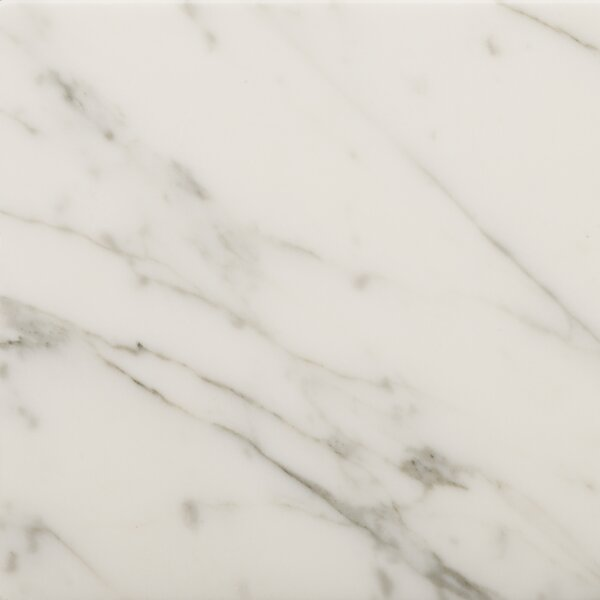 Marble 24 x 24 Field Tile in Bianco Gioia by Emser Tile