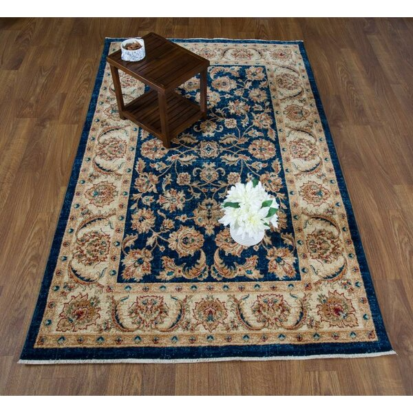 Dunanney Navy/Ivory Area Rug by Astoria Grand