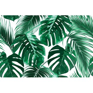 Aerial Removable Tropical Palm Leaves 917 L X 175 W Peel And Stick Wallpaper Roll