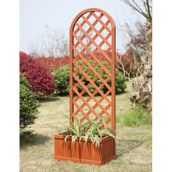 Fir Wood Planter Box with Trellis by Convenience Concepts