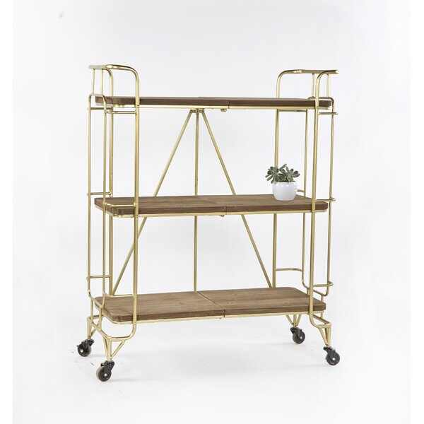 Permelia Etagere Bookcase by Ivy Bronx