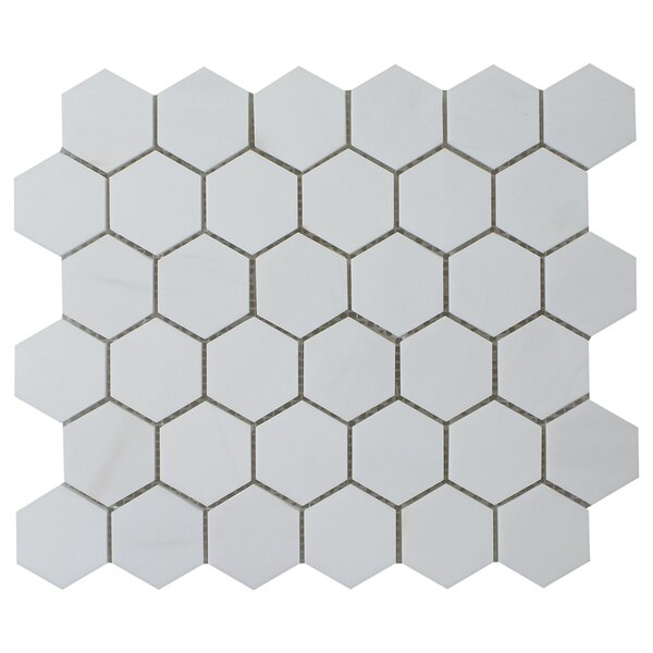Dolomite Hexagon Polished 12 x 12 Natural Stone Mosaic Tile in Beige by Seven Seas