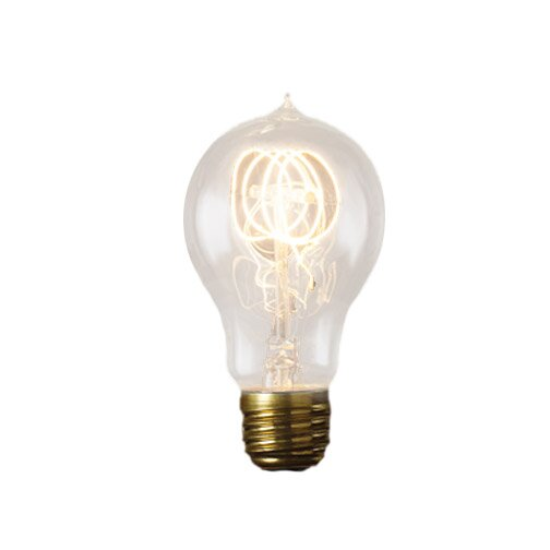 E26 Incandescent Round Light Bulb (Set of 4) by Birch Lane™