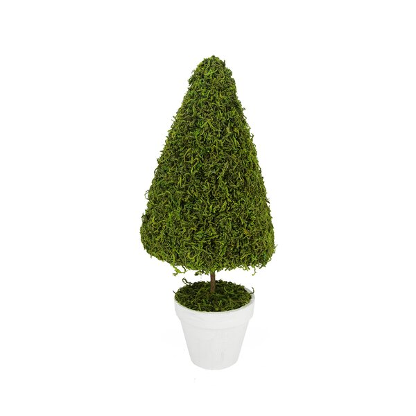 Reindeer Moss Artificial Spring Floral Topiary Tree in Pot by Northlight Seasonal