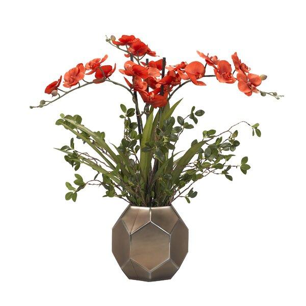 Phal Orchids Centerpiece in Glass Vase by Brayden Studio