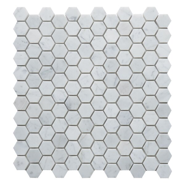 Carrara Hexagon 1 x 1 Marble Mosaic Tile in White by Matrix Stone USA