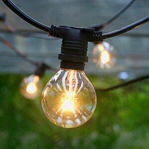 25-Light 29 ft. Globe String Lights