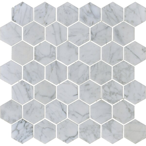 Carrara 2 x 2 Hexagon Polished Marble Mosaic Tile in White by The Bella Collection