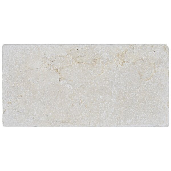 Harrison 3 x 6 Marble Subway Tile in Crema Marfil Classico by Itona Tile