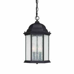 Great Price Hearne 3-Light Outdoor Hanging Lantern By Darby Home Co