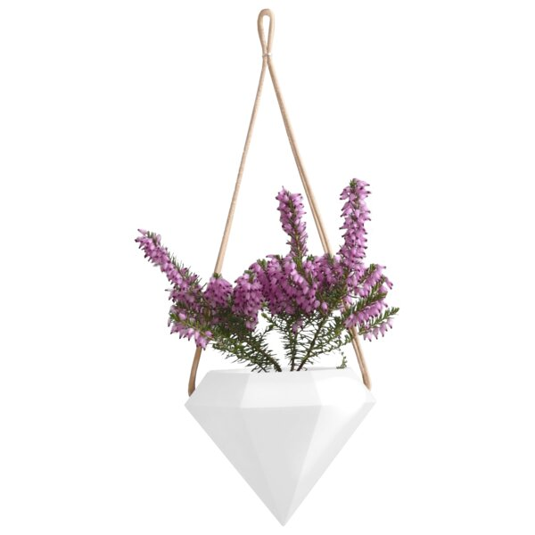 Chloris Diamond Hanging Planter by Wrought Studio