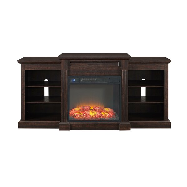 Horrocks 66 TV Stand with Fireplace by Alcott Hill