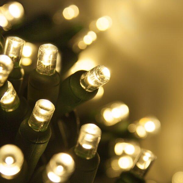70 Light Christmas LED Light by Wintergreen Lighting