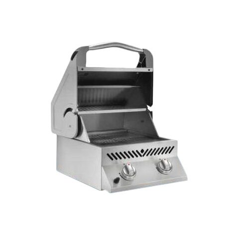 Built-In 2-Burner Built-In Propane Gas Grill by Napoleon
