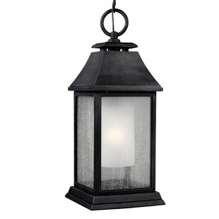 Price comparison Hague 1-Light Outdoor Hanging Lantern By Darby Home Co