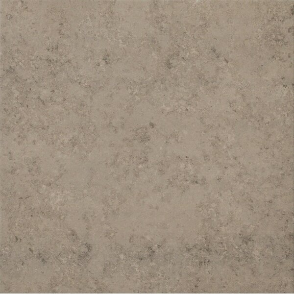 Trace 18 x 18 Porcelain Field Tile in Fossil Grey by Lea Ceramiche