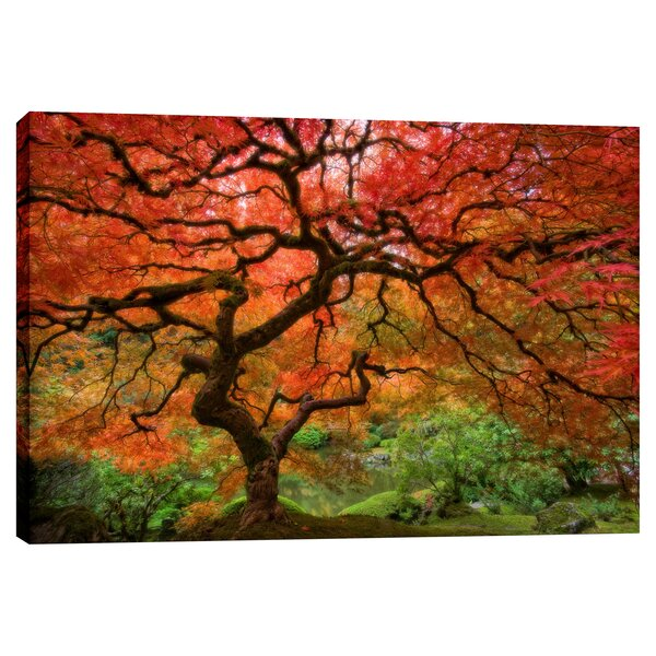 Japanese Maple by Jesse Estes Photographic Print on Wrapped Canvas by Cortesi Home