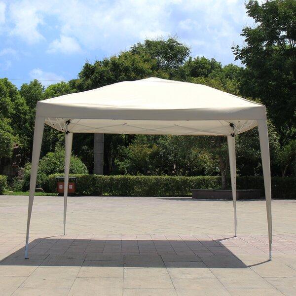 Easy Folding 10 Ft. W x 10 Ft. D Metal Pop-Up Canopy by Azure Sky