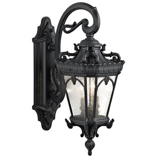 Savings Guzzi 2-Light Outdoor Wall Lantern By Fleur De Lis Living
