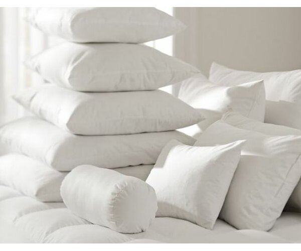 White Pillow Insert (Set of 2) by Alwyn Home| @ $30.00